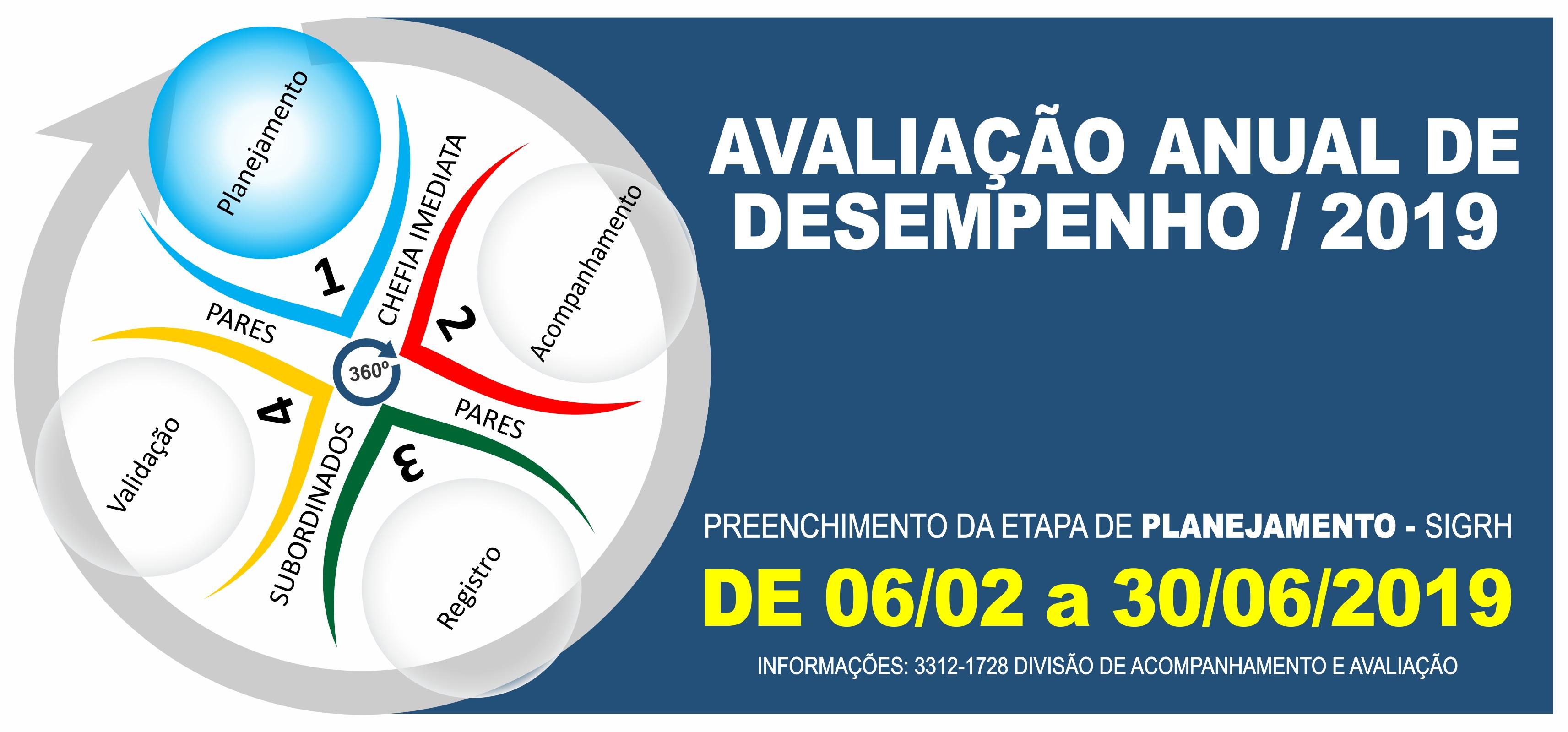 AVALIAÇÃO DE DESEMPENHO 2019