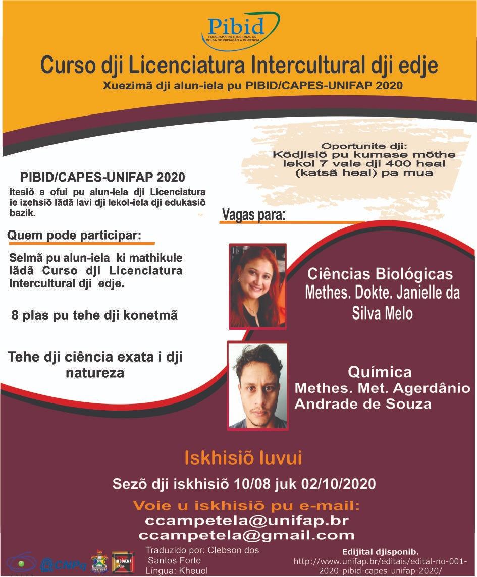 BOLSAS DO PROGRAMA DE INICIAÇÃO À DOCÊNCIA (PIBID)