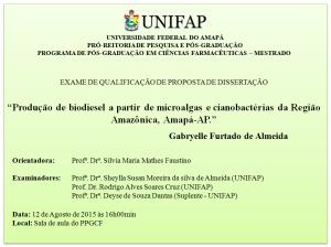 Qualificacao_2015-08-12_Gabryelle Furtado de Almeida