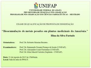 Qualificacao_2015-08-21_Hina da Silva Furtado