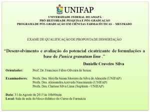 Qualificacao_2015-08-31_Danielle Craveiro Silva