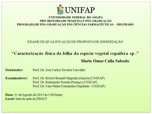 Qualificacao_2015-08-31_Mario Omar Calla Salcedo