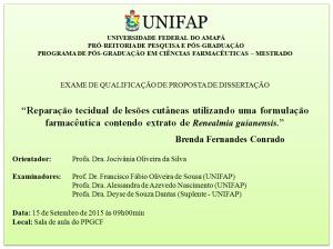 Qualificacao_2015-09-15_Brenda Fernandes Conrado