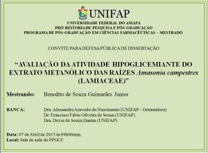 DEFESA-2015-04-07 - Benedito de Souza Guimarães Junior