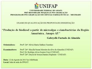 Qualificação - 2015-08-12 - Gabryelle Furtado de Almeida