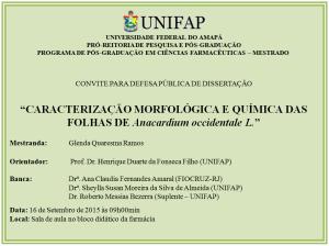 Defesa de Dissertação - 2015-09-16 - 09h00 - Glenda Quaresma Ramos