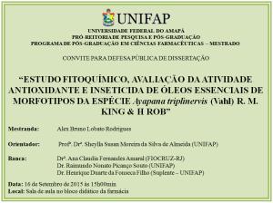 Defesa de Dissertação - 2015-09-16 - 15h00 - Alex Bruno Lobato Rodrigues