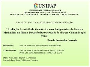 Qualificacao_2016-06-06_Brenda Fernandes Conrado