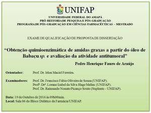 2016-10-19 09h00 - Qualificação - Pedro Henrique Fauro de Araújo