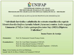 2016-10-20 09h00 - Qualificação - Inana Fauro de Araújo