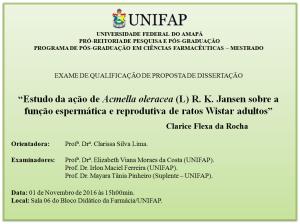 2016-11-01 15h00 - Qualificação - Clarice Flexa da Rocha