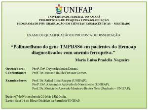 2016-11-07 15h30 - Qualificacao - Maria Luisa Pradella Nogueira