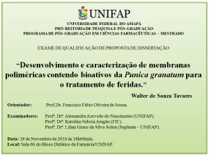 2016-11-18 18h00 - Qualificacao - Walter de Souza Tavares