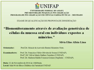 2016-11-21 14h00 - Qualificacao - Silvia Eline Alfaia Lima