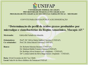 Defesa de Dissertacao - 2017-02-20 15h00 - Gabryelle Furtado de Almeida