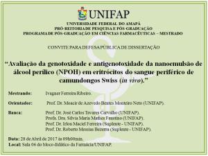 Defesa de Dissertacao - 2017-04-28 09h00 - Ivagner Ferreira Ribeiro
