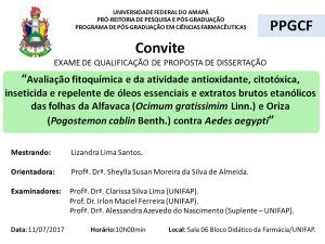 2017-07-11 10h00 - Qualificação - Lizandra Lima dos Santos