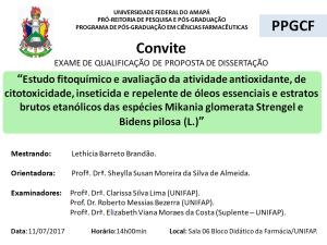2017-07-11 14h00 - Qualificação - Lethicia Barreto Brandão