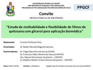 DEFESA DE DISSERTAÇÃO - 2018-01-29 14h30 - ERVETON PINHEIRO PINTO