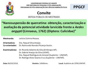DEFESA DE DISSERTAÇÃO - 2018-03-06 14h00 - LETICIE ZULMIRA PESSOA