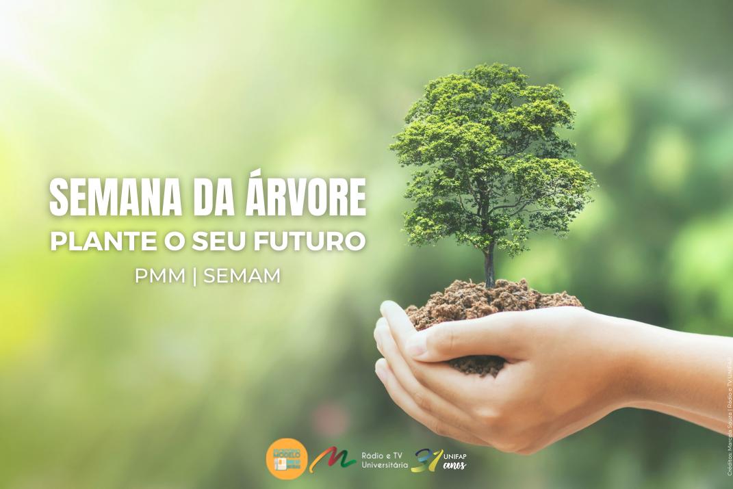 Dia da Árvore: entenda a importância dessa data e a programação da cidade em comemoração a este dia